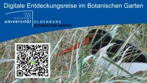 Digitale Entdeckungsreise im Botanischen Garten